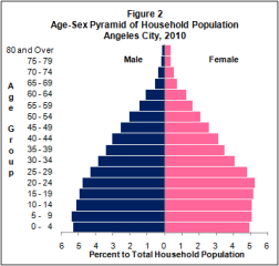 Angeles City Population Age Sex Guide 2010
