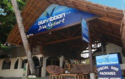 Blue Ribbon Divers Sunsplash Resort